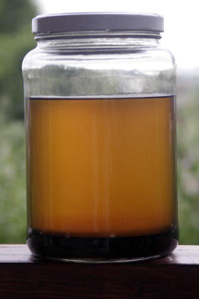 080626_biodiesel_decantado.jpg