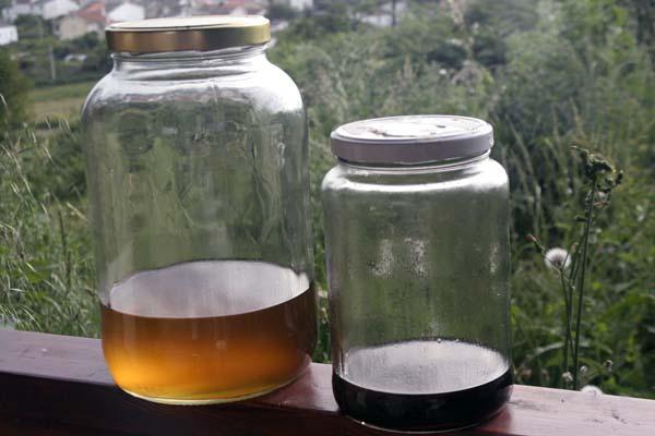 080626_biodiesel_y_glicerina_separados.jpg