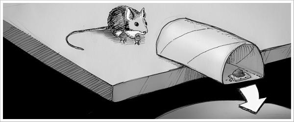 0920-mouse.jpg