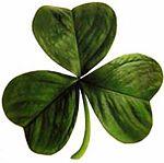 150px-Irish_clover.jpg