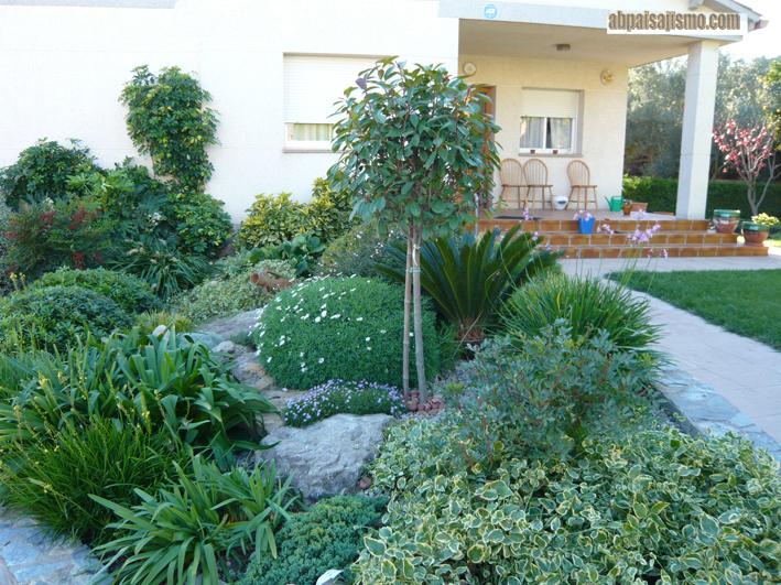 Jard n debajo de pinos resumen de este trabajo p gina 7 - Pinos para jardin ...