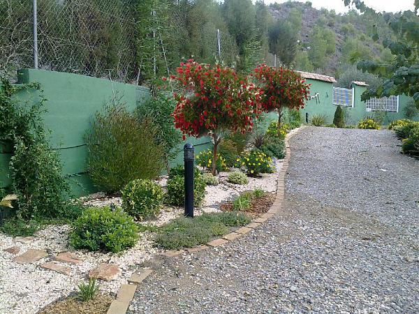 Ajardinar mi terreno donde hay plantadas tipuanas y otras - El jardin de lola ...