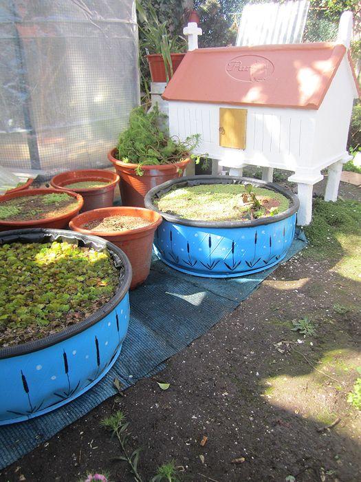 Neum ticos reciclados trabajos realizados por foreros de for Estanque con neumatico