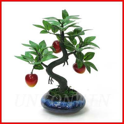 2012_Popular_Decorative_Fruit_Tree_Bonsai.jpg