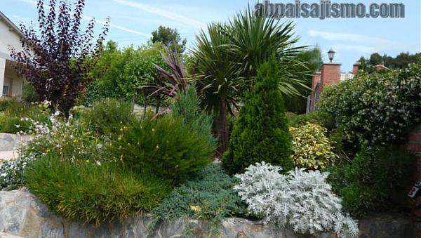 25792d1308576348t-remodelacion-de-jardin-bajo-pinos-panoramica-1.jpg