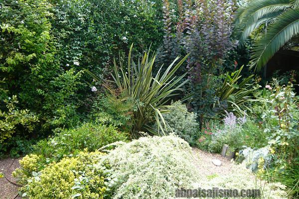 26473d1311353423t-el-jardin-de-la-parroquia-p1070693.jpg