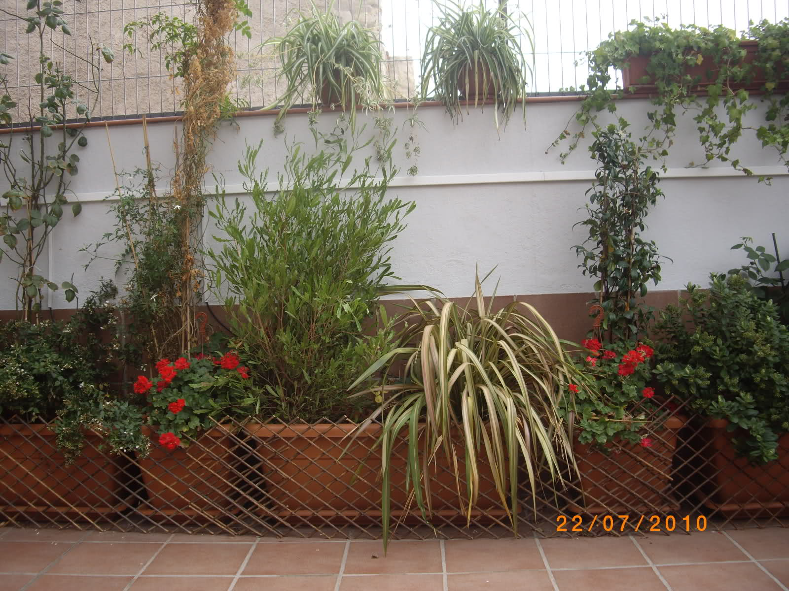 Trucos para embellecer antiest ticas jardineras de - Jardineras de plastico ...