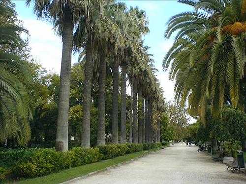 Jardines bot nicos de espa a y parques y jardines para for Jardines del real valencia