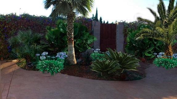 35812d1372129924-jardin-de-sombra-d_zps4b42f205.jpg