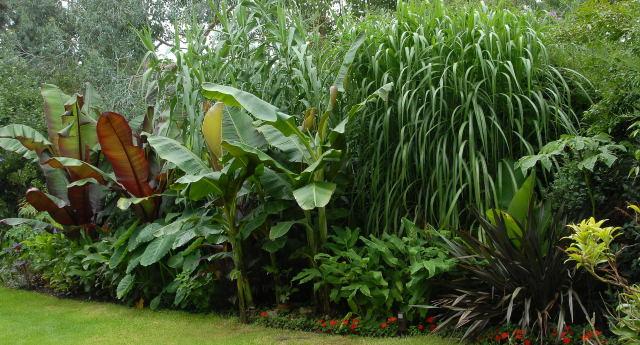 35820-jardin-de-sombra-de-sol-rusti_zps4b4f011a.jpg