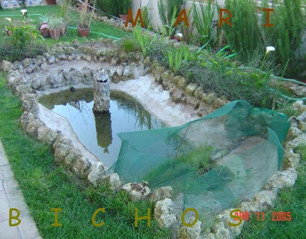 proyecto estanque autosuficiente que solo tenga que