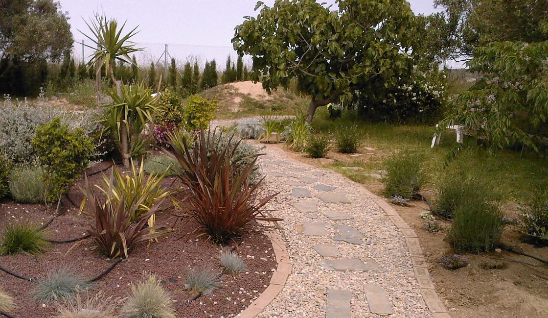 7153d1274688958-jardin-de-sampac-isleta.jpg