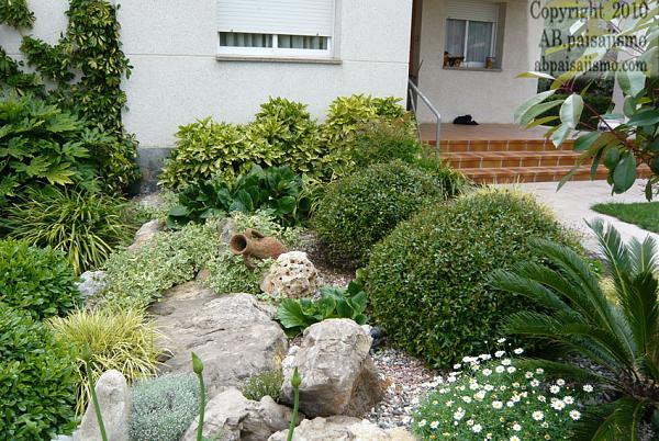 Jard n debajo de pinos resumen de este trabajo p gina 6 - Pinos para jardin ...