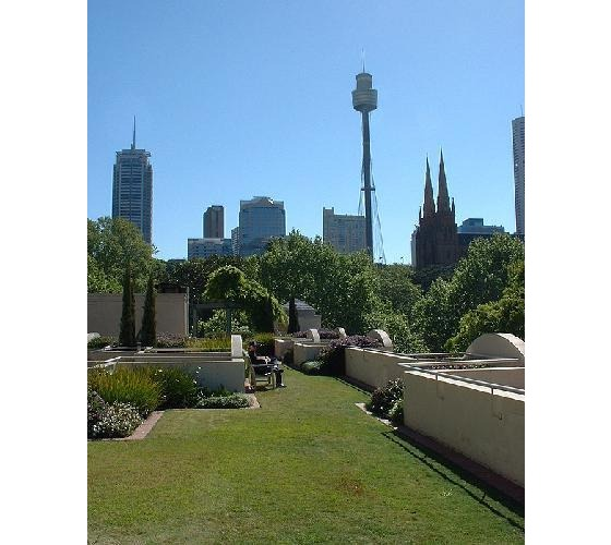 954150-Roof_top_garden_in_our_apartment-Sydney.jpg