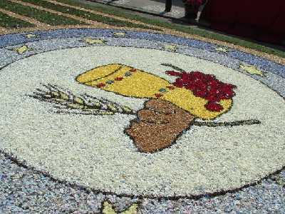 Fotos de alfombras de flores - Las mejores alfombras ...