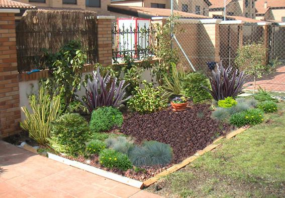 Antes y despues de mi jard n mas fotos - Arreglo de jardines ...