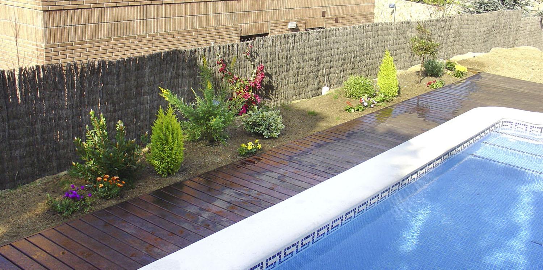 Jard n desnudo con s lo un olivo y c sped necesita ideas - Arriate jardin ...