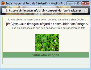 arx1303820291x.jpg