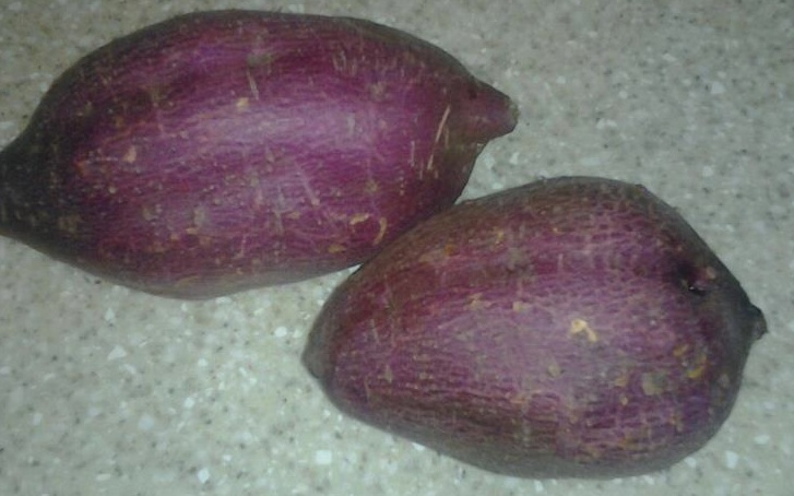 Batatas-cosechadas.jpg
