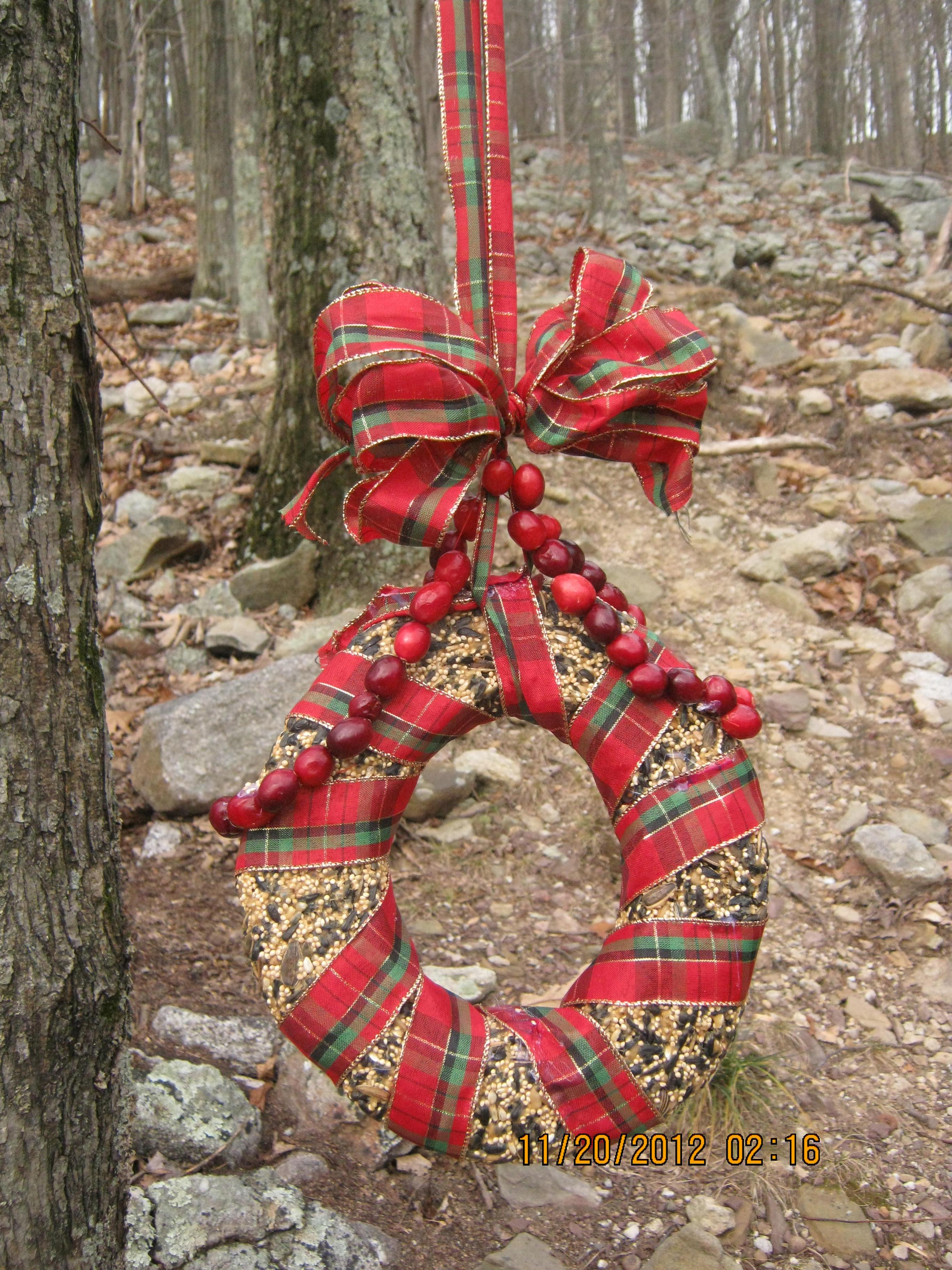 bird-seed-wreath-11.jpg