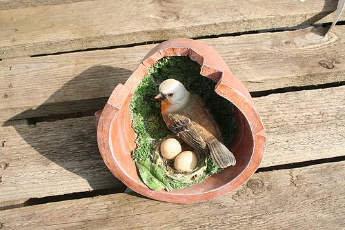 birds_nest_in_flower_pot.jpg