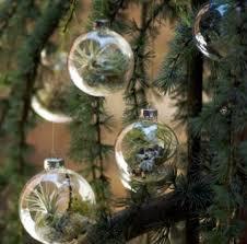 Bolas_Navidad_Plantas_1_www.plantamer.blogspot.com.jpg