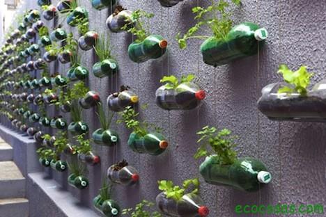 botellas-maceta.jpg