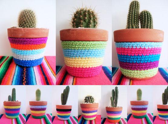 cactusgrandes.jpg