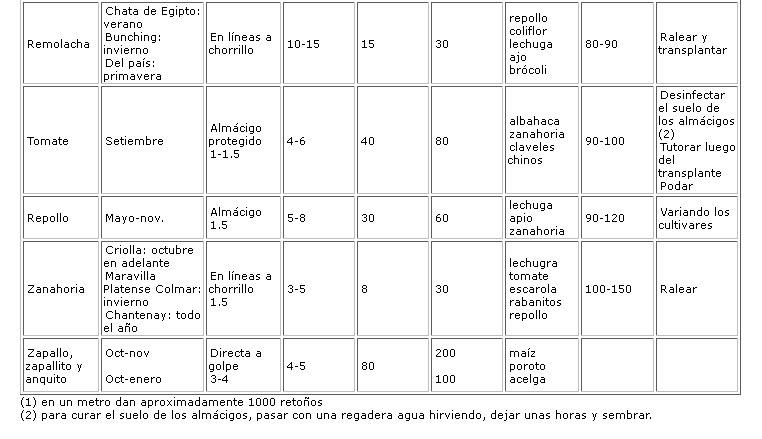 calendario-hortalizas-arg-3.jpg