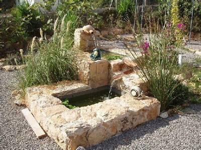 Fotos Del Estanque Y La Fuente De Mi Jard N Precioso