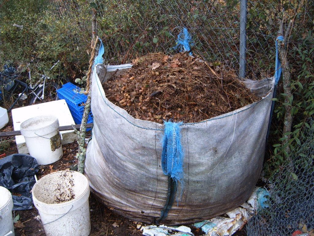 compostdebellotas1.jpg