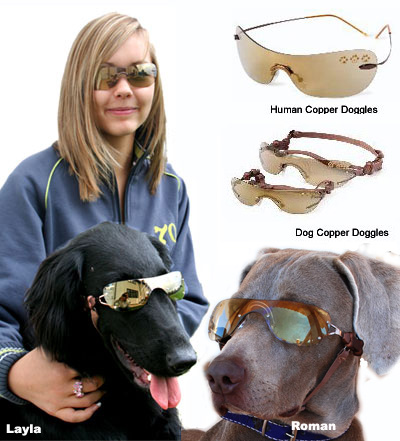 copper-doggles.jpg