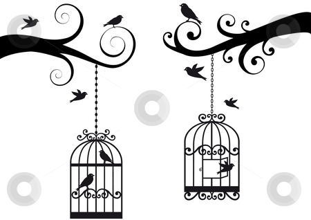 cutcaster-photo-100738288-birdcage-and-birds-vector.jpg