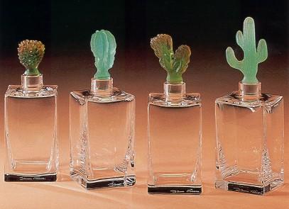 daum-cactus-btl.jpg