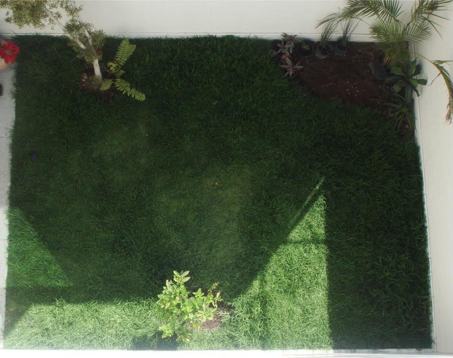 Ayuda para dise ar esquina de un jard n peque o for Jardines pequenos esquineros