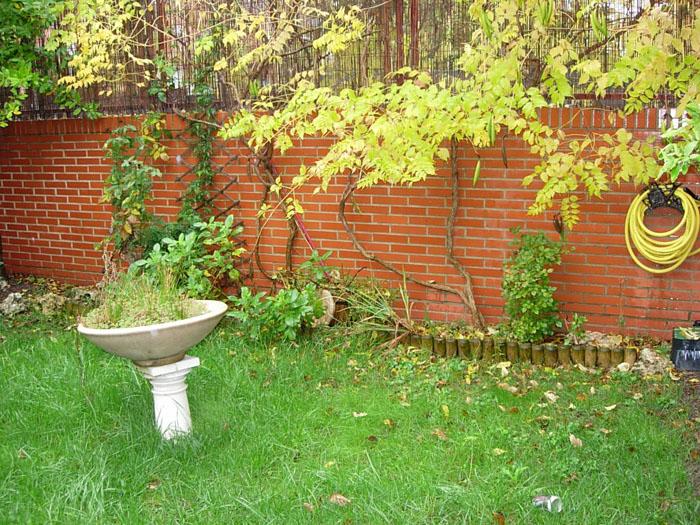 Software de dise o de jardines p gina 4 for Programa para diseno de jardines