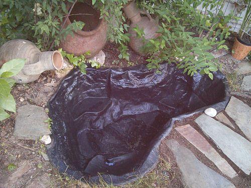 Arreglar peque o estanque abandonado for Arreglar jardin abandonado