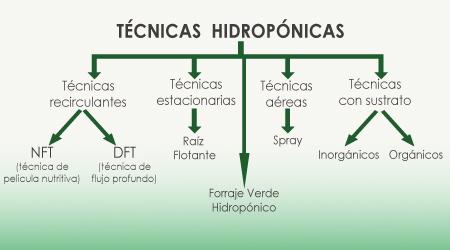 esquema_tecnicas_hidroponicas.jpg