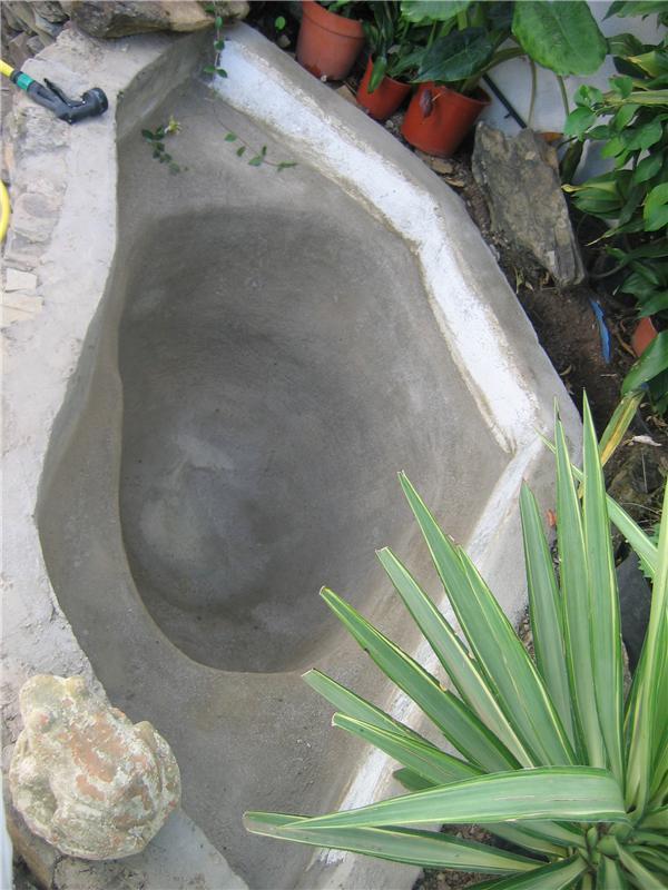 estanque foro2.jpg