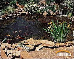 estanque1.jpg