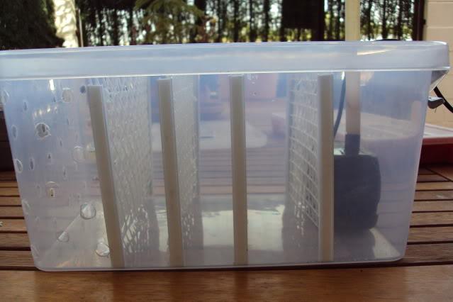 Filtro casero para peque o estanque del patio for Filtro natural para estanque