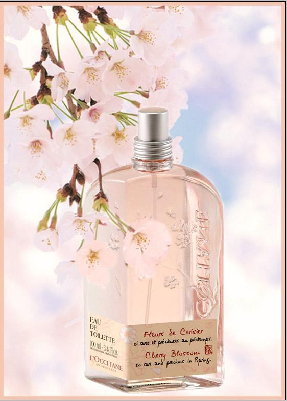 Fleur+de+cerisier+L'occitane.jpg