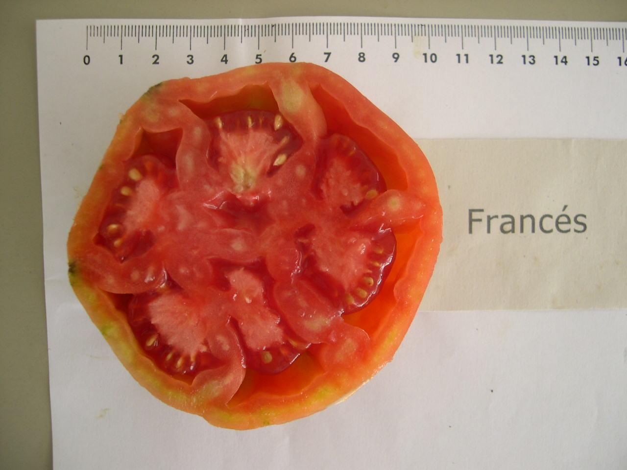 frances1.JPG