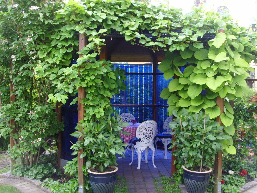 garden-relax-angelholm.JPG