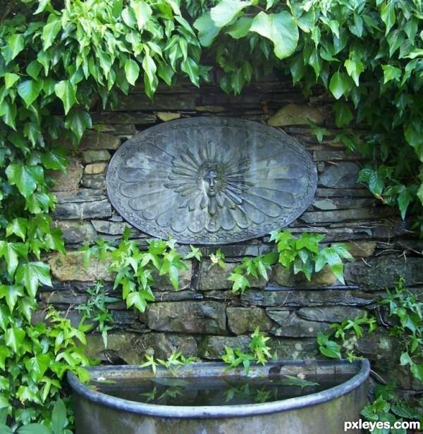 Garden-sink-4c8e10bceee7d.jpg
