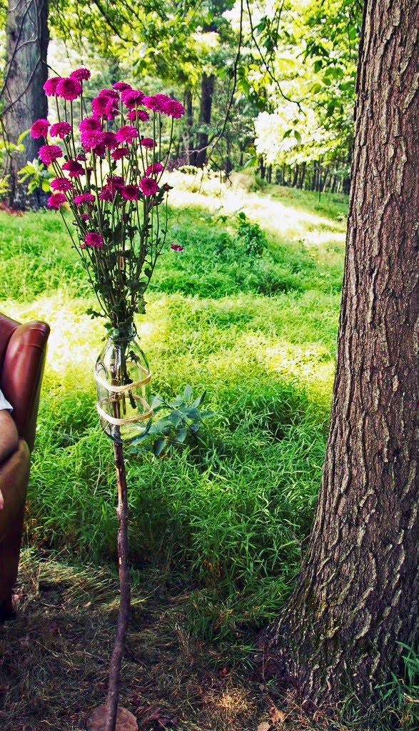garden10-587x1024.jpg