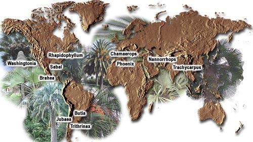 genre-map400.jpg