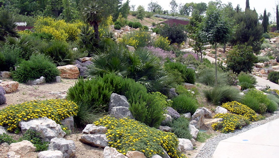 Fotos de 3 jardines mediterr neos for Plantas jardin mediterraneo