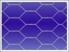 Hexagonal_Wire_Mesh_hexagon_wire_netting_chicken_v0.summ.jpg