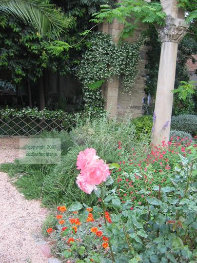 Jard n de la parroquia resumen de este proyecto for Ahuyentar gatos jardin